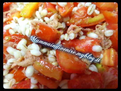 insalata fresca con orzo, pomodori e tonno